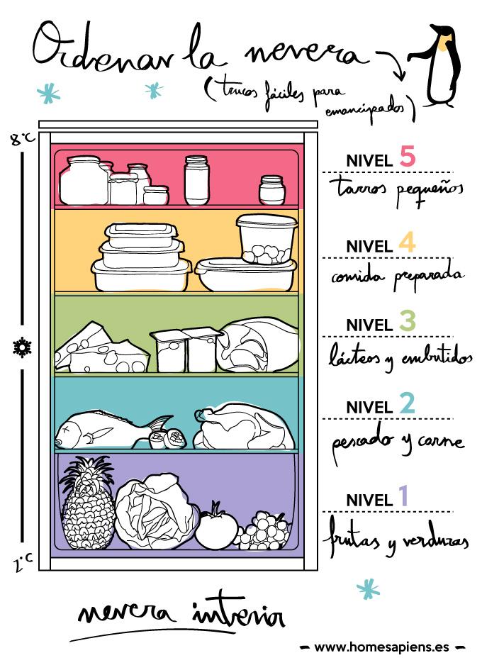 Aprende c mo organizar bien la nevera for Como ordenar la nevera