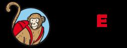 Home Sapiens logo