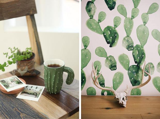 cactus_decoracion2