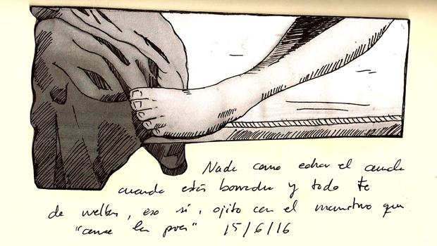 diario_81